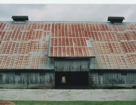 このような建物の屋根や壁に使用されていました。